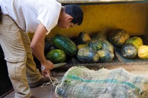 En el proceso también participan los cuidadores, ellos disponen y entregan los alimentos en cada exhibición.